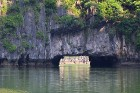Travelnews.lv ar vjetnamiešu laivu Halongas līcī apciemo savvaļas pērtiķus. Sadarbībā ar 365 brīvdienas un Turkish Airlines 1