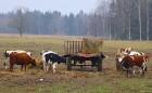Travelnews.lv apceļo Latgali ar jauno un sportisko «Renault Megane R.S.» ar 280 zirgspēkiem 17