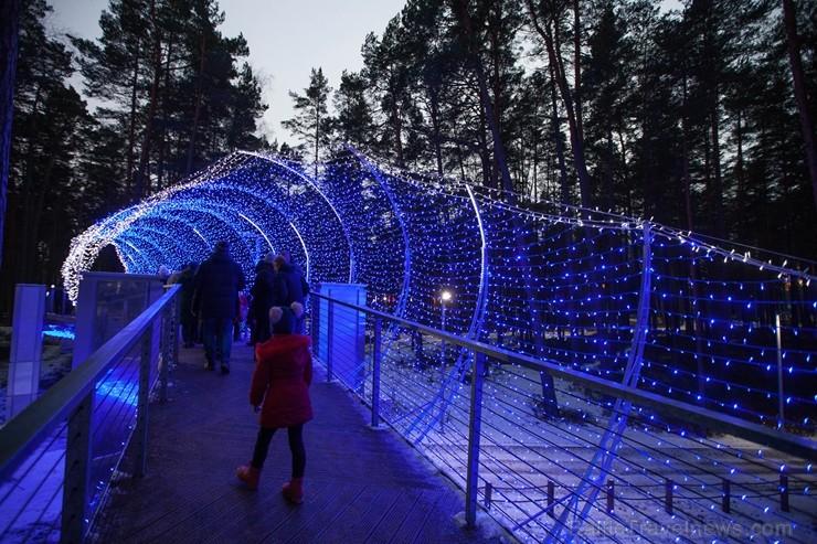 Jūrmalā - Dzintaru mežaparkā - atklāts Gaismas parks, kurā dažādos gaismas dekoros, skulptūrās jau otro gadu iemirdzas tūkstošiem LED gaismiņu.