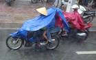 Vjetnamas galvenais transporta līdzeklis ir motorollers. Sadarbībā ar 365 brīvdienas un Turkish Airlines 56