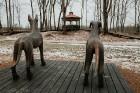 Ērgļu pils teritorija ir vērā ņemams tūrisma un apskates objektu papildinājums, kas priecēs viesus ar savādāku Ērgļu panorāmu no jaunizveidotās lapene 17