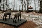 Ērgļu pils teritorija ir vērā ņemams tūrisma un apskates objektu papildinājums, kas priecēs viesus ar savādāku Ērgļu panorāmu no jaunizveidotās lapene 18