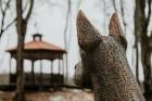 Ērgļu pils teritorija ir vērā ņemams tūrisma un apskates objektu papildinājums, kas priecēs viesus ar savādāku Ērgļu panorāmu no jaunizveidotās lapene 30