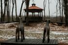 Ērgļu pils teritorija ir vērā ņemams tūrisma un apskates objektu papildinājums, kas priecēs viesus ar savādāku Ērgļu panorāmu no jaunizveidotās lapene 31