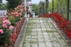 Travelnews.lv iepazīst Konjas pilsētas populārākās vietas ārpus centra. Sadarbībā ar Turkish Airlines 16
