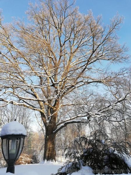 Valmiera mirdz un vilina ceļtājus visos gadalaikos, bet šobrīd tā jo īpaši vilina gan kultūras dzīves baudītājus, gan aktīvo ziemas prieku mīļotājus.