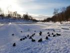 Valmiera mirdz un vilina ceļtājus visos gadalaikos, bet šobrīd tā jo īpaši vilina gan kultūras dzīves baudītājus, gan aktīvo ziemas prieku mīļotājus. 5