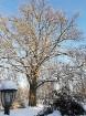 Valmiera mirdz un vilina ceļtājus visos gadalaikos, bet šobrīd tā jo īpaši vilina gan kultūras dzīves baudītājus, gan aktīvo ziemas prieku mīļotājus. 10