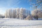 Valmiera mirdz un vilina ceļtājus visos gadalaikos, bet šobrīd tā jo īpaši vilina gan kultūras dzīves baudītājus, gan aktīvo ziemas prieku mīļotājus.  30