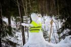Leģendārajam ziemas rallijam «Sarma 2019» pieteicās deviņdesmit astoņas ekipāžas, kuru sportisti pārstāvēja trīspadsmit valstis, ieskaitot pat tādas k 56