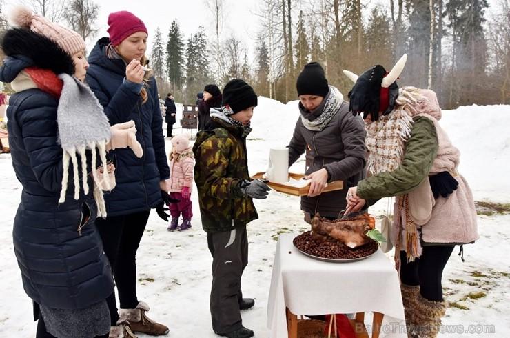 Kopā ar folkloristiem un latvisko tradīciju zinātājiem Alūksnē svinēja Meteņdienu, ejot rotaļās, lieloties, ēdot cūkas šņukuru, vizinoties no kalna un