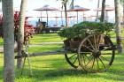 Travelnews.lv iepazīst Vjetnamas pludmales viesnīcas «Seahorse Resort & Spa» kopā ar 365 brīvdienas un Turkish Airlines 22