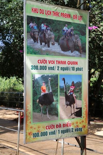 Travelnews.lv iesaka ignorēt zoodārzu Prenn parkā līdz dzīvnieku uzturēšanas apstākļu būtiskai uzlabošanai. Atbalsta: 365 brīvdienas