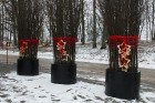 Rembates parkā pie Lielvārdes novada Kultūras centra jau otro gadu tika svinēti Meteņi, lai kopā ieskandinātu pavasari 7