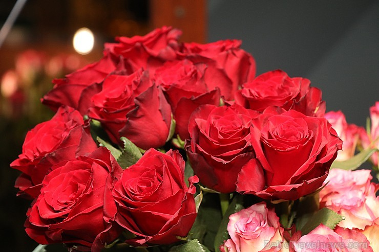 Prāmju kompānija «Tallink Grupp» uz «Romantika» klāja svin 30 gadu jubileju un 13 gadus Latvijā 250712