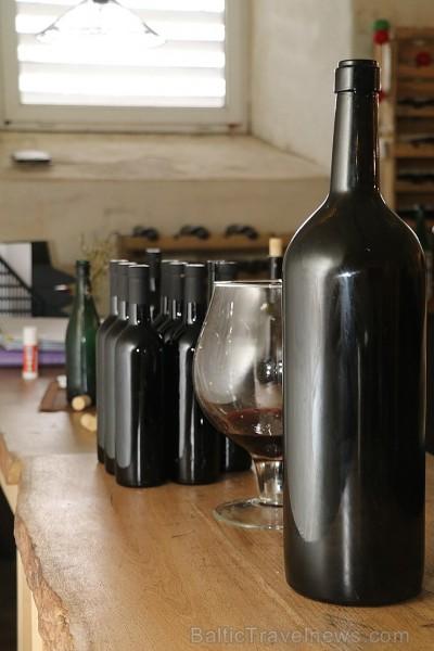 Travelnews.lv kopā ar «Turkish Airlines» un «Baltic DMC Group» iepazīst «Aizputes vīna darītavu»