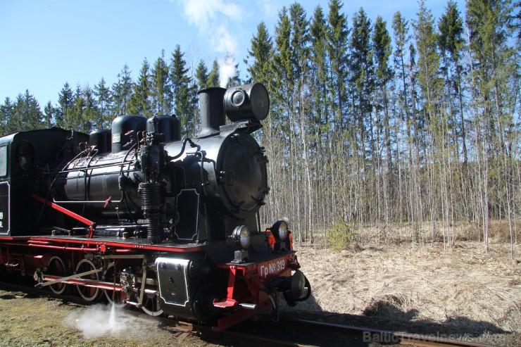 2019.gadā vilciens ar tvaika lokomotīvi kursē 20. apr., 4. maijā, 18. maijā, 1. jūn., 15. jūn., 29. jūn., 13. jūl., 27. jūl., 10. aug., 24. aug., 7. s
