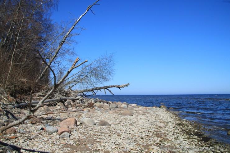 Par ziemas vētrām var tik vien nojaust pēc daudzajiem izgāztajiem kokiem un gludi nopulētajiem akmeņiem