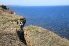 Procesi turpinās joprojām, brīžiem var redzēt atdalīties sākušus krasta fragmentus uz kuriem pat rūdīts