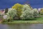 Travelnews.lv apciemo pavasarīgo Jaunpils pili un izbauda kroga ēdienkarti 6