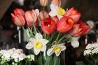 Travelnews.lv apciemo pavasarīgo Jaunpils pili un izbauda kroga ēdienkarti 38