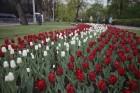 Ar svinīgiem koncertiem, militāro parādi, kopīgu pulcēšanos pie balti klātiem galdiem sestdien Latvijā un citviet pasaulē plaši tika svinēta Latvijas  5