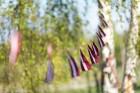 Ar svinīgiem koncertiem, militāro parādi, kopīgu pulcēšanos pie balti klātiem galdiem sestdien Latvijā un citviet pasaulē plaši tika svinēta Latvijas  58