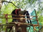 Preiļi top skaistāki - ar izzinošu stāstījumu pilsētas parkā noritējuši noslēdzošie darbi pie vārtu stabu apmetuma atjaunošanas, gruntēšanas un krāsoš 18