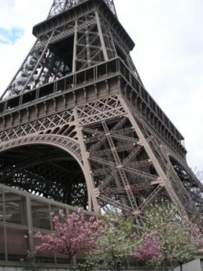 komentārs: Parīze, Eifeļa tornis ziedu laikā avots: www.travelnews.lv 14174