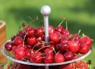 Jūrmalas viesnīca «Lielupe by Semarah Hotels» rīko bagātīgu «Summer Vibes» atklāšanas pasākumu 12