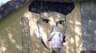 Karostas glābšanas biedrība Liepājā 7. - 9. jūnijā rīkoja līdz šim nebijušu pasākumu - KAROSTAS FESTIVĀLU Brīvības cīņu simtgadē... 8