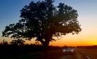 Travelnews.lv apceļo Latgali un Sēliju ar jauno rodsteru «Mazda MX-5» 18
