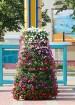 Travelnews.lv apmeklē Kurzemes sakoptāko ostas pilsētu Ventspili 25