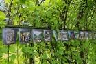 Travelnews.lv apmeklē Latvijas vienu no populārākajiem tūrisma objektiem - Rundāles pili 27