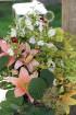 Travelnews.lv apmeklē Latgales tradicionālās kultūras centru «Latgaļu sāta» 72