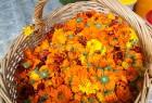 Ar krāšņu pasākumu buķeti Krāslavā vairaku dienu garumā svinēja pilsētas svētkus