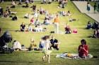 Mežaparka Lielajā estrādē 15 000 kvadrātmetros, kurus sedz zaļa zālīte, bija unikāla iespēja pirmo reizi atpūsties Latvijā lielākajā piknikā un vienla 7