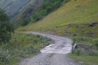 Travelnews.lv ar 4x4 mikroautobusu dodas Kaukāza kalnu maršrutā Datvijvari - Kistani - Khevsureti. Atbalsta: Georgia.Travel 19