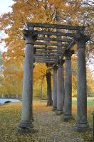 Lai arī šķiet, ka rudens tikai nupat sācies, nepamirkšķināsim ne acu, kad koki būs klāti zeltā! Izbaudi šo gleznaino laiku Alūksnes pusē! 5