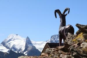 Travelnews.lv iepazīst Dombaja kalnus Kaukāzā. Atbalsta: Magtur 65