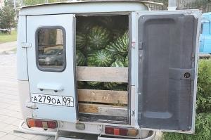 Karačaja-Čerkesijas republikā ēdienā tiek akcentēts garšīgs šašliks, bet augļus un dārzeņus ieved galvenokārt no citurienes. Atbalsta: Magtur 30