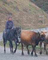 Travelnews.lv apceļo ar mikroautobusu Karačaja-Čerkesijas republiku. Atbalsta: Magtur 42