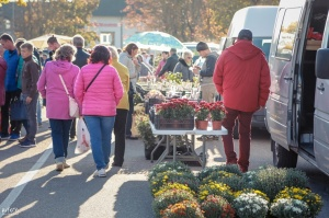 Madonas Saieta laukumā un tuvākajā apkārtnē notika tradicionālais rudens gadatirgus