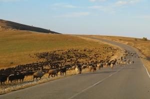 Travelnews.lv ar auto apceļo Kabarda-Balkārijas republiku Krievijā. Atbalsta: Magtur 78