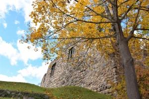 Ceļotājus Valmierā sagaida krāšņs rudens, kas ik dienu arvien vairāk rotā pilsētu 15