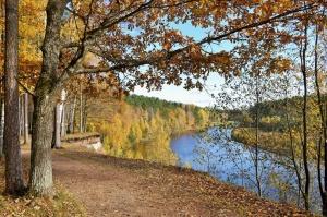 Valmieras pilsēta rotājas rudens zeltā 29