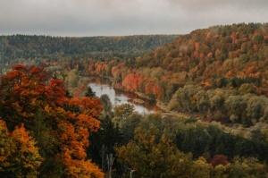Sigulda var dižoties daudzveidīgām rudens ainavām pilsētā un tās apkārtnē 1