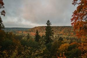 Sigulda var dižoties daudzveidīgām rudens ainavām pilsētā un tās apkārtnē 4