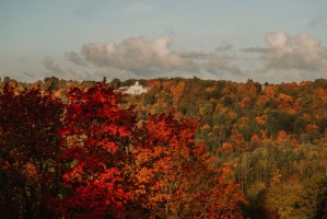 Sigulda var dižoties daudzveidīgām rudens ainavām pilsētā un tās apkārtnē 13