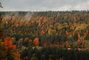Sigulda var dižoties daudzveidīgām rudens ainavām pilsētā un tās apkārtnē 14